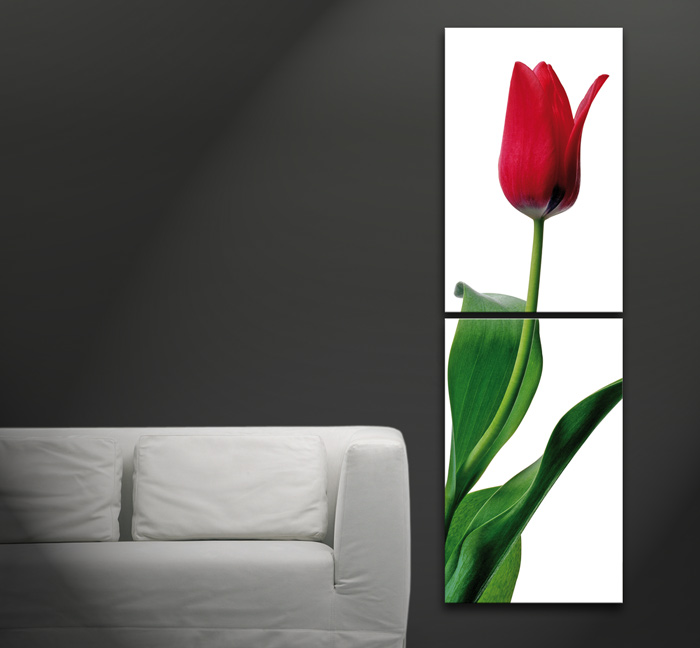 rote tulpe bild leinwand auf keilrahmen ebay. Black Bedroom Furniture Sets. Home Design Ideas