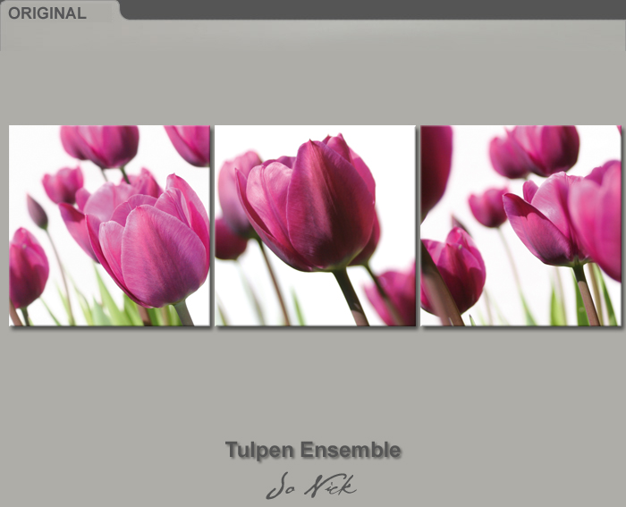 bilder leinwand tulpen ensemble 120 x 40 cm auf keilrahmen ebay. Black Bedroom Furniture Sets. Home Design Ideas