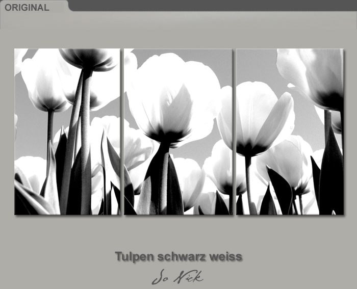 bilder leinwand tulpen schwarz weiss 120 x 60 cm auf. Black Bedroom Furniture Sets. Home Design Ideas